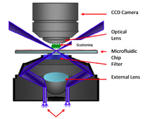 Sensing markers and molecules with nano structures on chips